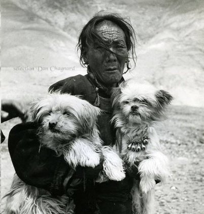 Tibetan woman with Apsos 1949